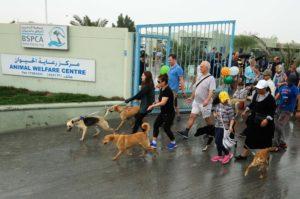 BSPCA-Dogwalk-1